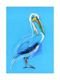 Sketch Of A Pelican Posters par Boyan Dimitrov