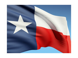The Texas Flag Prints by  bioraven