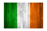 Flag Of Ireland Art by Miro Novak