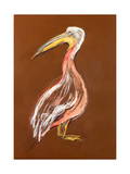 Sketch Of A Pelican Prints by Boyan Dimitrov