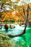 Pictorial Autumn Scene Prints by  Maugli-l