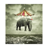 Fanciful Elephant Premium Giclee Print by  ValentinaPhotos