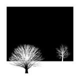 Bare Tree Background Prints by  mike301