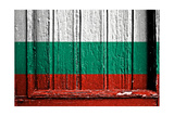 Bulgaria Prints by  budastock