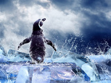 Penguin On The Ice In Water Drops Poster by  yuran-78