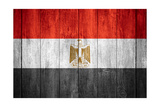 Flag Of Egypt Posters by Miro Novak