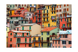 Colourful Texture Of Manarola City Of Cinque Terre - Italy Print by Blaz Kure