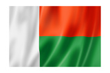 Madagascar Flag Prints by  daboost