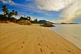 Deserted Morning Beach With Golden Sand And Footprints Photographic Print by  vitalytitov