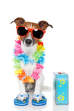 Tourist Dog With Hawaiian Lei And A Bag Fotografisk tryk af Javier Brosch