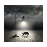 Dark Side Affiches par  ValentinaPhotos