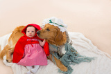 Baby Little Red Riding Hood With Wolf Dog Dressed As Grandma Golden Retriever Prints by  holbox
