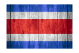 Flag Of Costa Rica Posters by Miro Novak