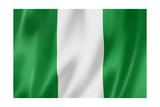 Nigerian Flag Reproduction giclée Premium par  daboost