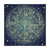 Vintage Zodiac Constellation Of Northern Stars Poster von Alisa Foytik