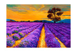 Lavender Fields Art by Boyan Dimitrov