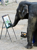 Elephant Artist Painting Photographic Print by  boonsom