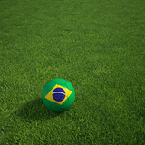 3D Rendering Of A Brazilian Soccerball Lying On Grass Poster by  zentilia