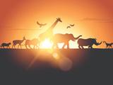 Sunset Safari Fotodruck von  Solarseven