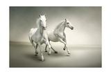 White Horses Print by  varijanta