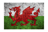 Flag Of Wales Prints by Miro Novak