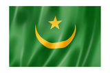 Mauritania Flag Prints by  daboost