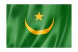 Mauritania Flag Prints by  daboost