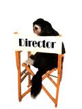 Director Dog Print by  danilobiancalana