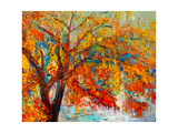 Autumn Tree Prints by Boyan Dimitrov