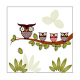 Owl On A Branch Posters by Debra Hughes