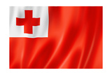 Tonga Flag Posters by  daboost