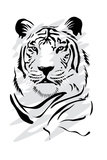White Tiger Prints by  stari