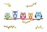 Owl Five Premium giclée print van  Julka