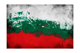 Bulgarian Flag Prints by igor stevanovic