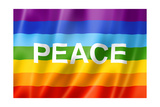 Rainbow Peace Flag Poster by  daboost