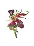 Purple Pixie Ca Láminas por Atelier Sommerland