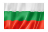 Bulgarian Flag Prints by  daboost