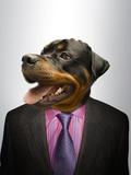 Rottweiler Dog Dressed Up As Formal Business Man Prints by  Nosnibor137