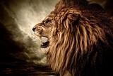 Roaring Lion Against Stormy Sky Reprodukcja zdjęcia autor NejroN Photo