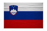 Slovenia Flag Art by igor stevanovic