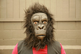 A Male Model Wears A Gorilla Head Costume At The Request Of The Photographer Prints by  mikeledray