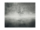 The Mist Prints by  ValentinaPhotos