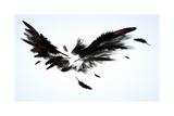 Black Wings Kunstdrucke von Sergey Nivens