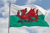 Welsh Flag Photographic Print by  Chrismp