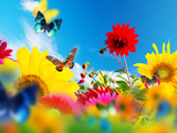 Sunny Garden Of Flowers And Butterflies. Colors Of Spring And Summer Photographic Print by PHOTOCREO Michal Bednarek