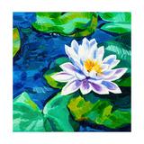 Water Lily Prints by Boyan Dimitrov