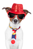 Crazy Silly Funny Dog Hat Glasses Tie Photographic Print by Javier Brosch