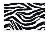 Zebra Pattern Prints by val lawless