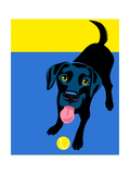 Illustration Of A Happy Playful Black Labrador Retriever Prints by  TeddyandMia