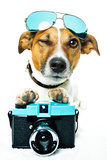 Dog Photo Camera Poster by Javier Brosch